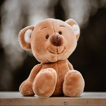 Teddy bear - soft dolls for toddler
