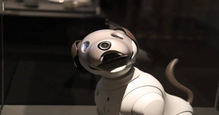 Best Robot Dog Toy for Kids: Your Child's Best Companion